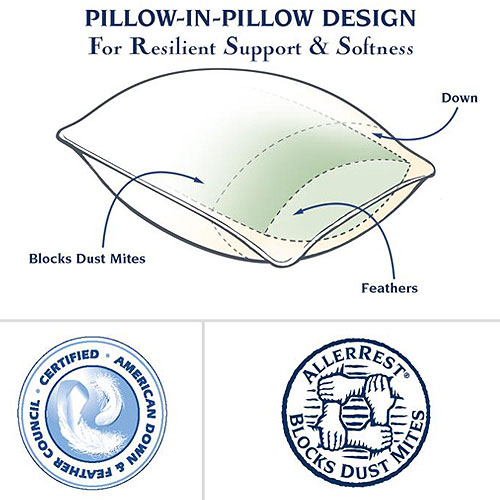 Pacific Coast Touch Of Down Pillow Queen 20x30 37 Oz Fill