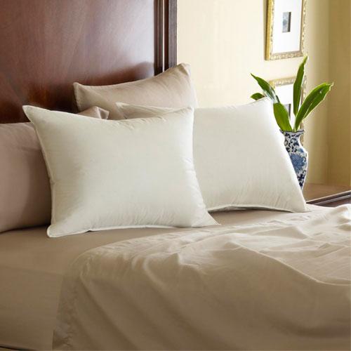pacific coast feather pillow queen 20x30 34 oz fill 10 per case price per each. Black Bedroom Furniture Sets. Home Design Ideas