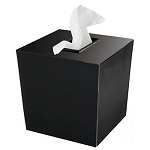 Steeltek® Spa Black Boutique Tissue Box Cover 6 Per Case Price Per Each