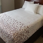 AHS Simplicity Collection T-200 Love Me Not Top Sheets Full 84x96 100% Polyester White/Brown 12 Per Case Price Per Each