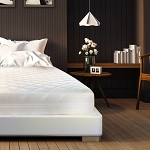 Bed Bug Mattress Protectors
