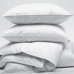 Ganesh Oxford Gold Pillow w/ Synthetic Down Standard 20x26 22Oz. Fill White 12 Per Case Price Per Each