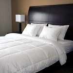 Downlite Continuous Comfort® Down Alternative Duvet Inserts w/ 14