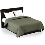 Martex Rx Solid Color Green Coverlets
